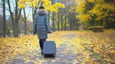 beleza na natureza : Woman with a suitcase in an autumn park Stock Footage