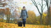 Woman with a suitcase in an autumn park Стоковые видеозаписи