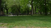 yeni : New York (Central Park)