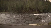 renovar : A rushing river in Idaho on a sunny spring morning