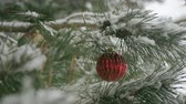 border : Red Christmas decorations with pine branches with copy space Stock Footage