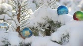 lentejoula : Christmas balls on a snowy fir branch in sunshine Vídeos