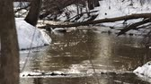 tragédia : Melting snow on the river in the woods. Stock Footage