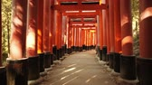 passagem : POV walk through the famous orange gates at Fushimi Inari Shinto shrine in Kyoto