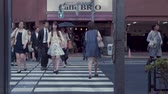 yaya : TOKYO, JAPAN - JUNE 23, 2015: People cross the street in a business district of Tokyo, Japan in slow motion Stok Video