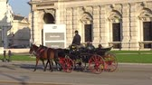 Австрия : Vienna, Austria - November 2017: Horse and carriage carrying tourists visiting Vienna. Vienna Wien is the capital and largest city of Austria, and one of the 9 states of Austria.