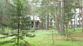odloučený : Cottage in the forest, surrounded by trees. Motion the camera through the panorama. A great background for your work. Dostupné videozáznamy