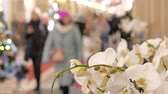 отраженный : Festive atmosphere in the mall. In the foreground a decorative flower. Not in focus people walk and buy gifts.