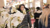 dát : Festive atmosphere in the mall. In the foreground a decorative flower. Not in focus people walk and buy gifts.