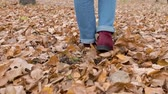 Female legs go on yellow foliage in the park. Rake foliage. Back view Stock Footage