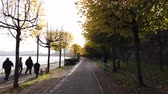 gyalogút : Bonn Germany, 06 November 2019: riding on Rhine embankment with lonely pedestrians . Sun blinking in branches of yellow trees 4k 50fps clip
