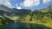 silence : Campo lake in Italian Alps Stock Footage