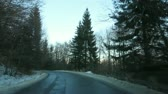 forest : Mountain Forest Road In Winter, Sinaia, Romania Stock Footage