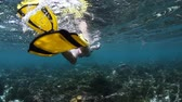 океан : Young lady finning underwater in tropical sea over coral reef