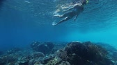 mascarar : Underwater scene with young woman snorkeling over coral reef in tropical sea Stock Footage