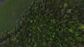 pod vodou : Aerial shoot of the forest. Camera moving forward to the ground and turning