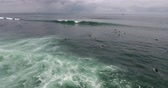 топ : Aerial shoot of the sea waves with foam and surfers at Serangan beach, Bali. Camera moves over the line up