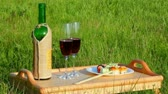 glass : picnic - tabe with wine and japanese food