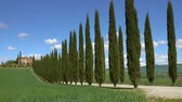 cipreste : Tuscany landscape with farmhouse and cypresses at sunny day. Province of Siena, Italy, 4k