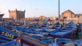 Blue fishing boats in the port of Essaouira at sunset, Morocco, 4k