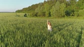 Beautiful girl walking in a wheat field at sunset, aerial view 4k