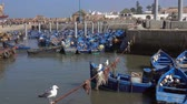 marokkó : Blue fishing boats in the port of Essaouira and seagulls in the foreground, Morocco, 4k Stock mozgókép