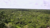 romok : Coba Mayan Panormic Ruins view over jungle video 4k Stock mozgókép