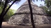 chichen : Coba Mayan Ruins archaelogical site panormic view video 4k Stock Footage