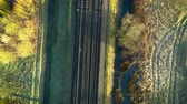 птицы : straight down top shot or a train crossing a bridge over the road Стоковые видеозаписи