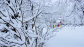 Russian winter. The winter Playground of snowy trees Стоковые видеозаписи