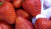 yoğurt : Ripe red strawberry mixed with yogurt slow motion video