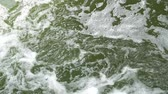 effluent : Beautiful green water in mountain river slow motion video