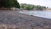 correção : Squirrel runs to the sea on the beach in Croatia in the afternoon