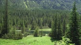 슬로바키아 : view of the valley of the mountain river in the Tatra mountains