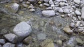 slovensko : crystal clear water in a mountain stream