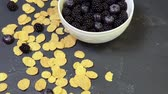 amoras : bowl of blackberries, blueberries and cereal. morning natural breakfast