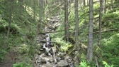 szczyt : Mountain waterfall in the Polish Tatras