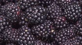 amoras : Rotation of black ripe blackberries close-up