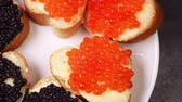 vaj : appetizers with red and black caviar close up rotate on a plate