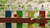 živý plot : Unusual homemade decorative fence in the form of colored pencils
