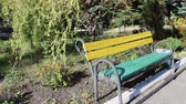 jacket : coloured bench in autumn
