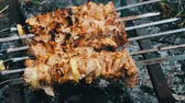 broiling : Delicious juicy fried meat on skewer, just cooked on a grill.leisure, food and drinks, people and holidays concept - cooking meat on barbecue grill Stock Footage