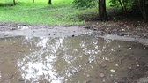 drench : Huge dirty black puddle after the rain on the ground
