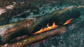 çatırtı : A view of the burning large logs that envelop the flames of fire. Bonfire in the nature, tourism and survival