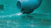 effluent : Large blue rain pipe along which the rain drains. Tropical Rainfall