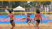 neformální : PATTAYA, THAILAND - FEBRUARY 4, 2017: Womens volleyball championship in Pattaya. Girls playing in beach volleyball Dostupné videozáznamy