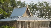 aves marinhas : Many white gulls sit on the roof of a building in Japanese style. Seagulls sit on wires, house roof, trees