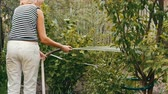 annaffiatoio : Woman is watering plants in her garden from a hose