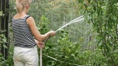 hadice : Woman is watering plants in her garden from a hose