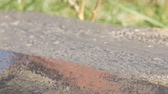 decking : Brush paints board close up view Stock Footage